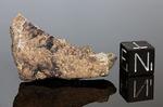 NWA 002 - Recuperata nel 1999, Marocco, Africa. Enstatite Chondrite EL6. Massa totale recuperata 234.4 grammi. Pezzo in collezione: frammento con faccia pulita gr.7 (McM329)
