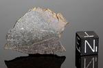 YILMIA - Recuperata nel 1969, riconosciuta nel 1971, Distretto Kambalda, Australia. Enstatite Chondrite EL6. Massa totale recuperata 24 kg. Pezzo in collezione: fetta gr.5.5 (McM262)
